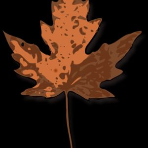 jimmiet Maple Leaf Thumbnail